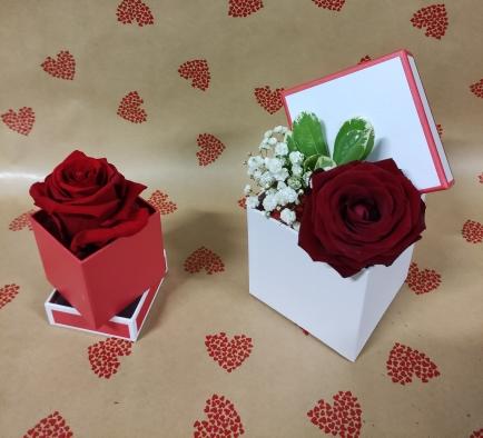 boite de rose avec de rose naturelle